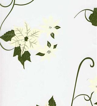 Ivory Poinsettia